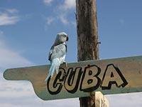 Едем на Кубу