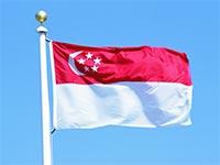 Флаг Сингапура