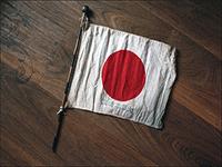 Едем в Японию