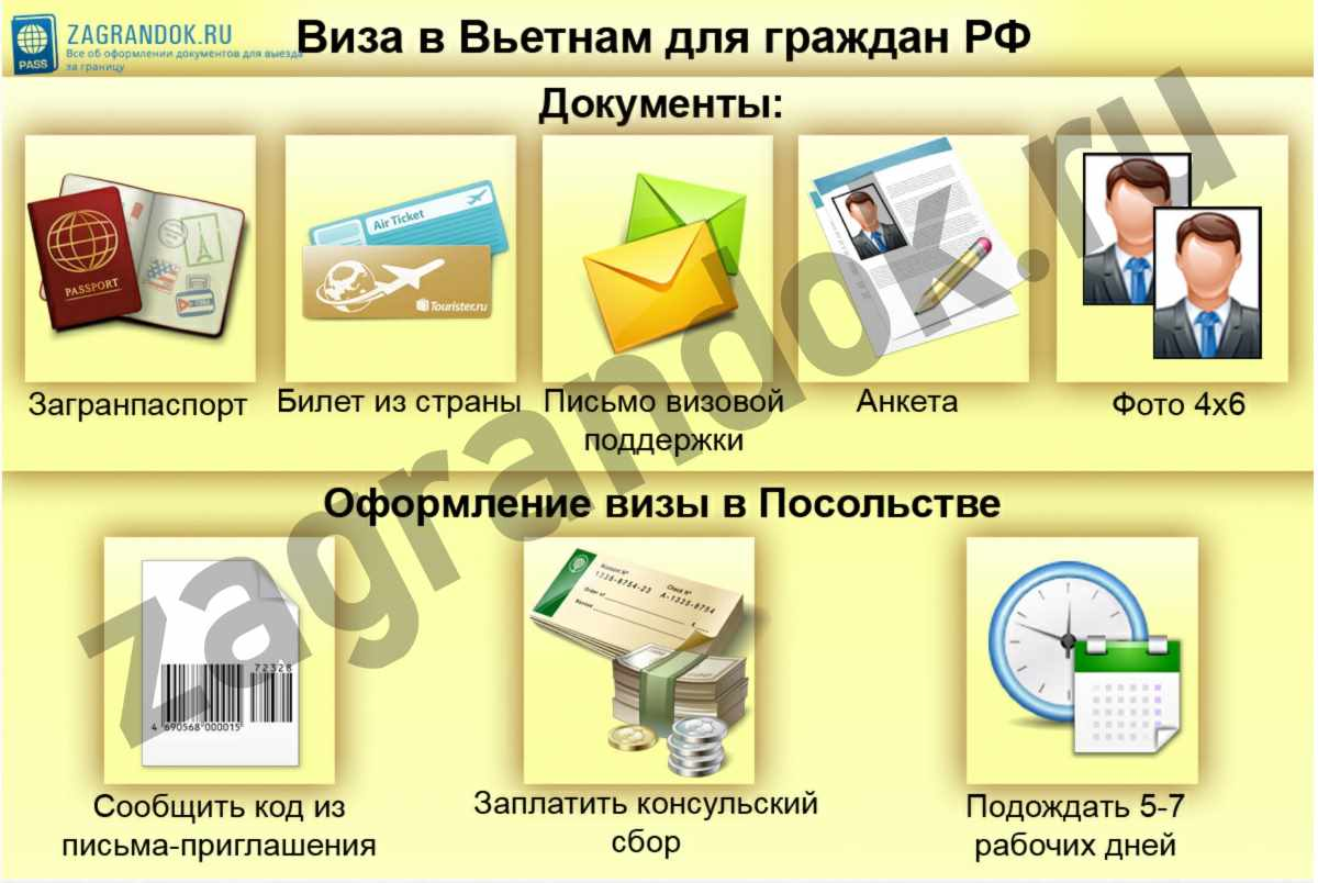Виза в Вьетнам для граждан РФ