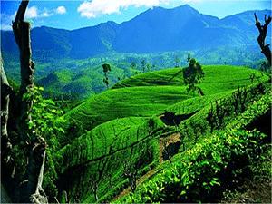 Живописные пейзажи Шри-Ланки