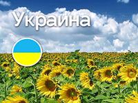 Едем в Украину