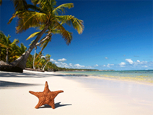 Отправляемся на Доминиканские острова