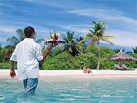 Отправляемся на Мальдивские острова