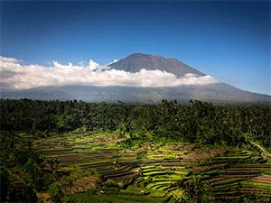 Дожди в Индонезии