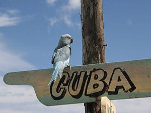 Отправляемся на Кубу