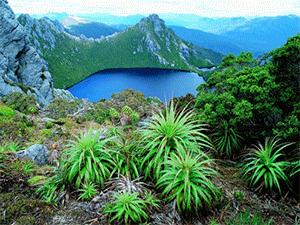 Красоты Тасмании