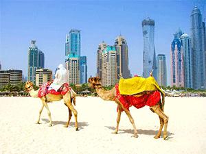 Поездка в ОАЭ