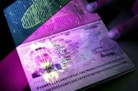 Что такое биометрический загранпаспорт и как он выглядит