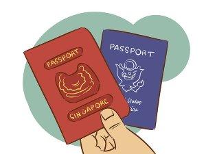 Двойное гражданство: особенности статуса
