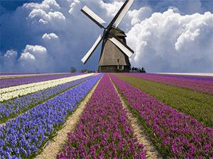 Красоты Голландии
