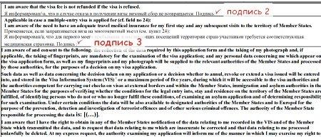 Анкета для шенгенской визы во францию word