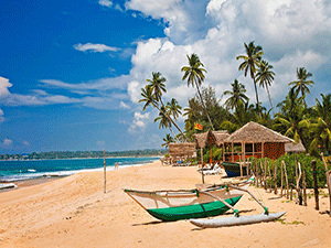 Жизнь на Шри-Ланке