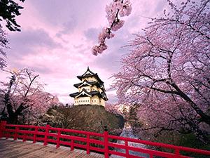Оформление визы в Японию самостоятельно в 2018 году