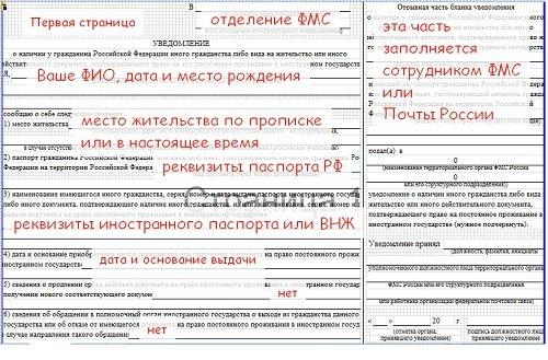 образец заполнения заявления о двойном гражданстве образец - фото 9