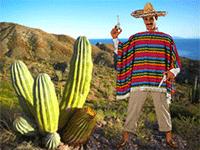Отправляемся в Мексику