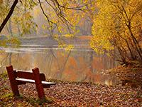Отдыхаем осенью