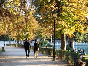 Осень в Мадриде