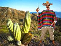 Жаркие краски: погода в Мексике по месяцам