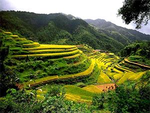 Природа в Азии