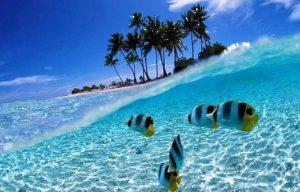 Недорогой отдых на морском побережье