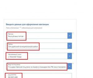 Регион для оплаты госпошлины за гражданство РФ