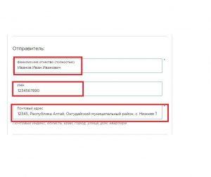Заполнение данных плательщика на сайте ГУВМ МВД РФ